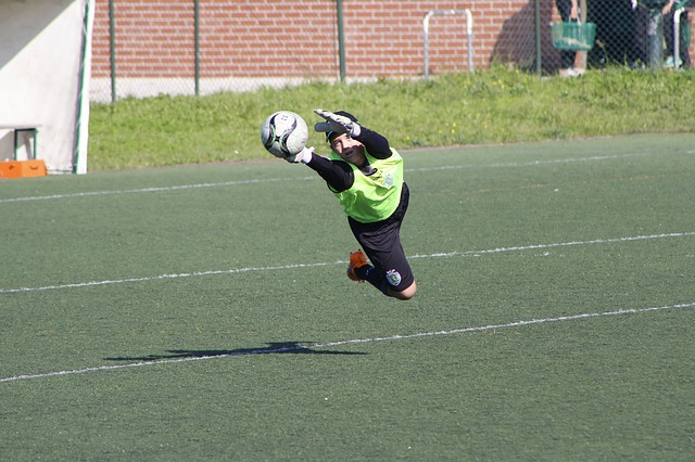 goalkeeper-1043600_640.jpg